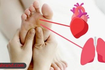 چرا می گویند پا قلب دوم انسان است؟