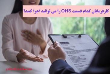 کارفرمایان کدام قسمت OHS را می توانند اجرا کنند؟